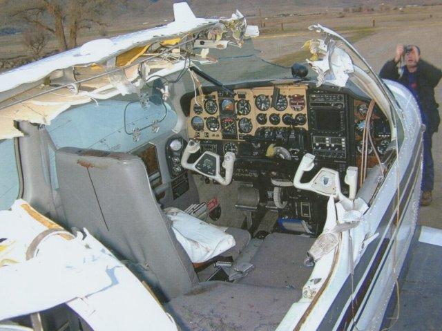 airplaneGooseMidAir1.jpg